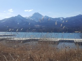 Faaker See - exklusives Domizil  in gepflegter Villa mit Seeblick